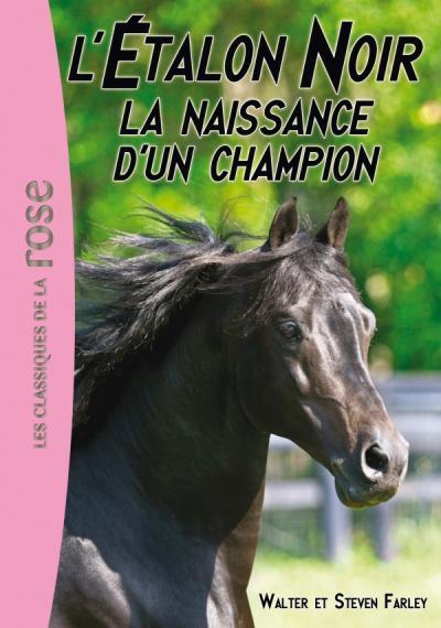 L'Étalon Noir 19 - La naissance d'un champion
