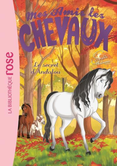 Mes amis les chevaux 19 - Le secret d'Andalou