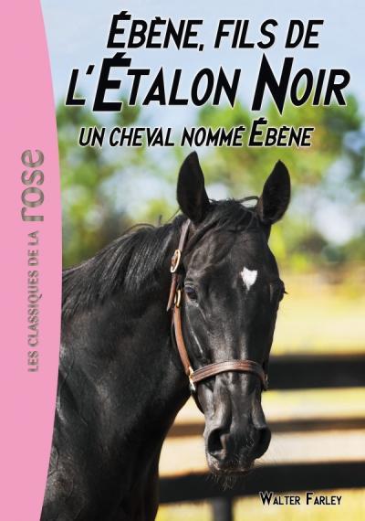 L'Étalon Noir 22 - Un cheval nommé Ébène
