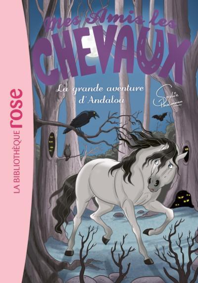 Mes amis les chevaux 21 - La grande aventure d'Andalou