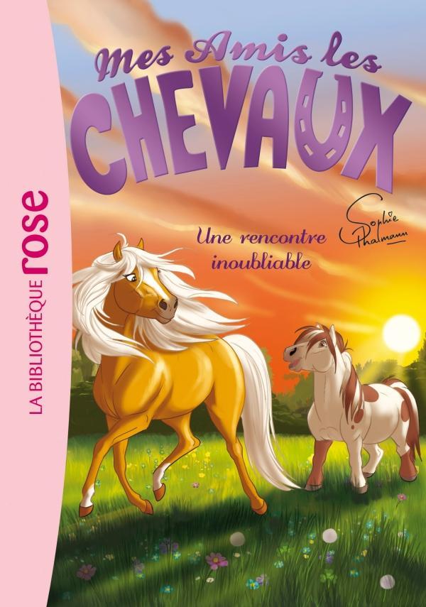Mes amis les chevaux 06 - Une rencontre inoubliable